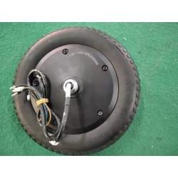 48v 500w IP67 motor med...